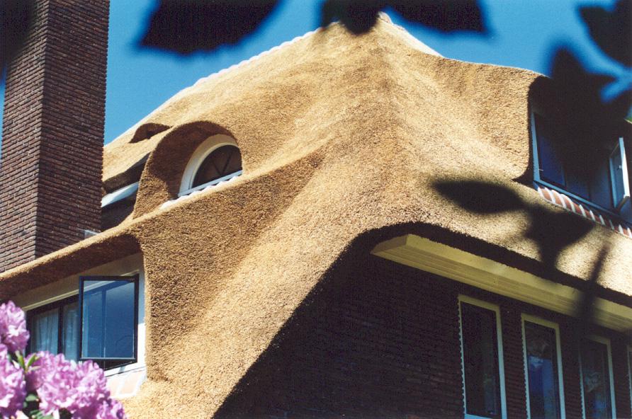 Kosten onderhoud rieten dak rietdekker drost